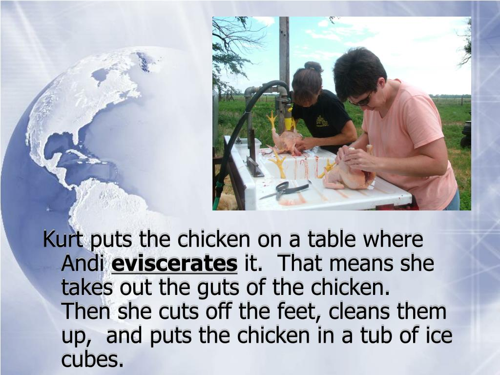 Kurt puts the chicken on a table where Andi