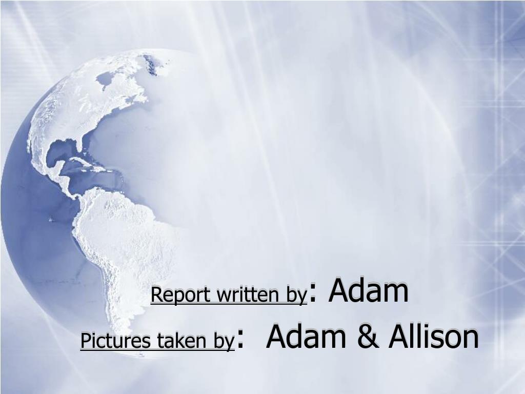 Report written by