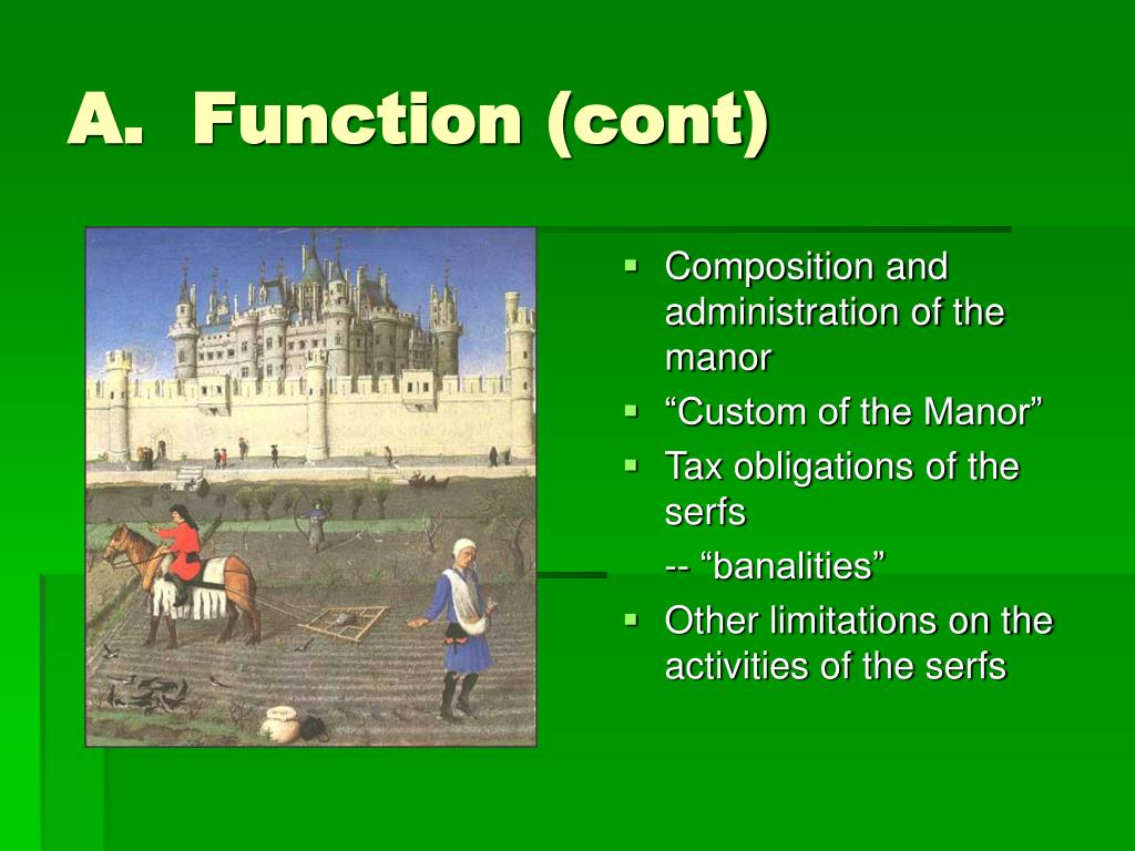 A.  Function (cont)