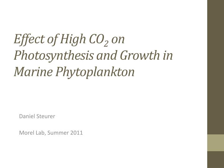 effect of high co 2 on photosynthesis and growth in marine phytoplankton n.