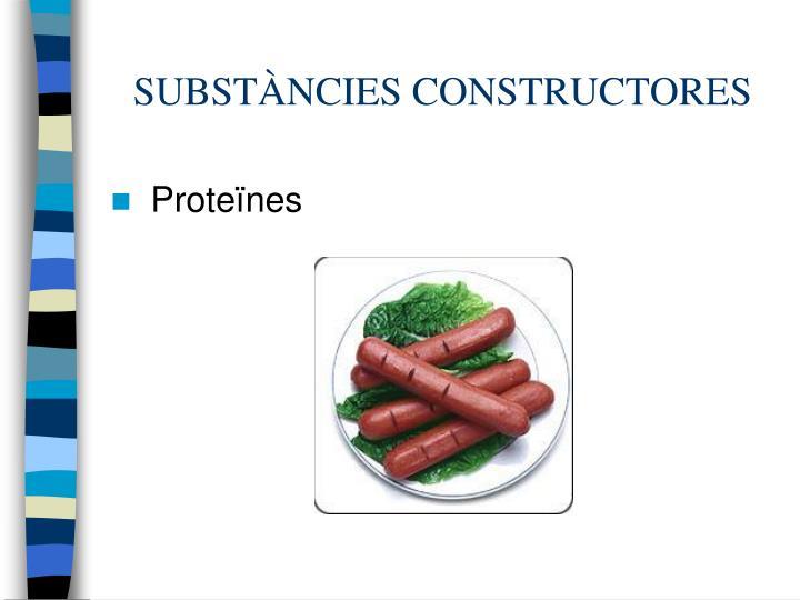 SUBSTÀNCIES CONSTRUCTORES