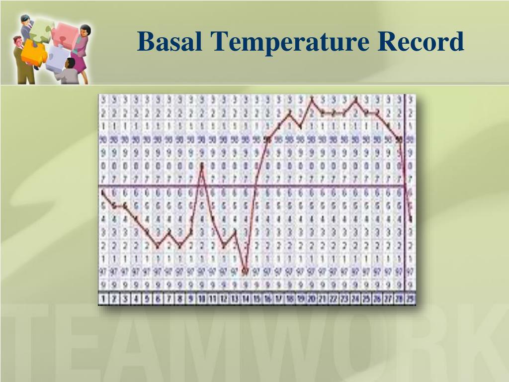 Basal Temperature Record