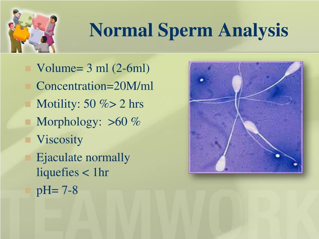 Normal Sperm Analysis