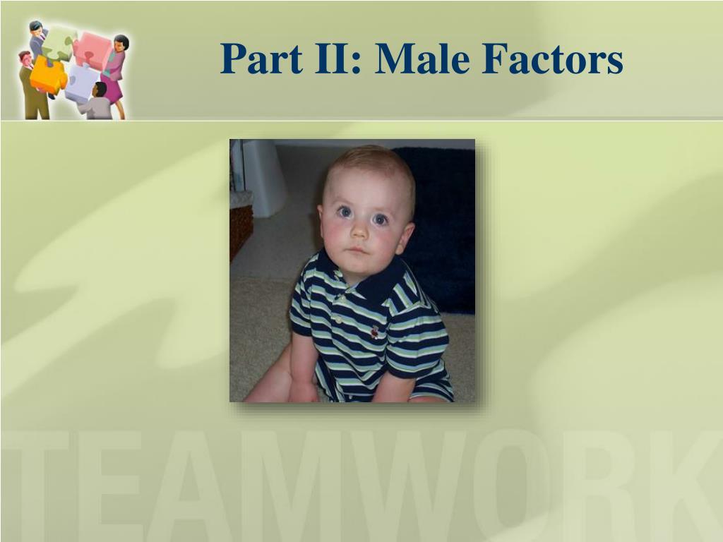 Part II: Male Factors