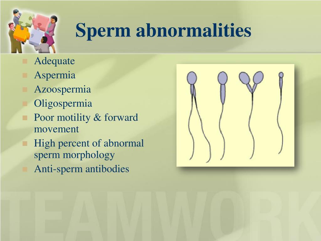 Sperm abnormalities