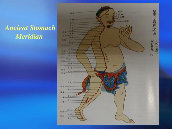 Ancient Stomach Meridian