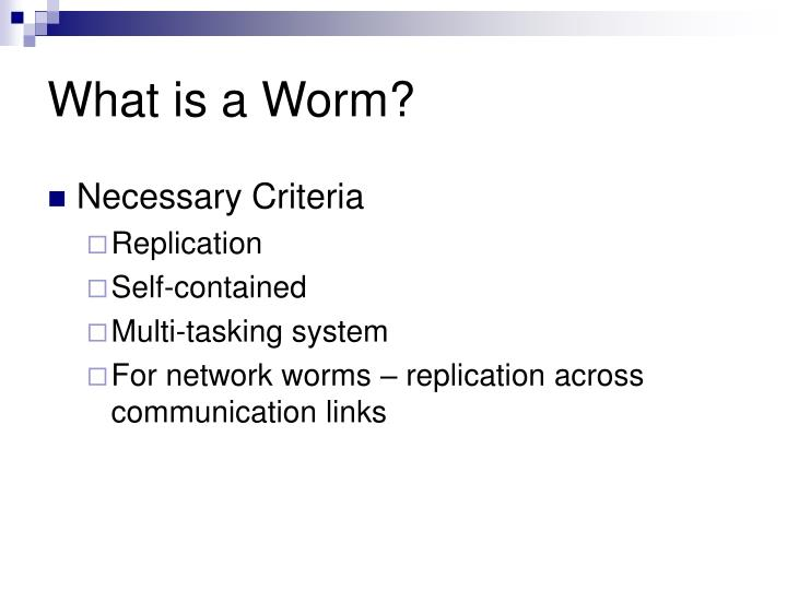 What is a Worm?