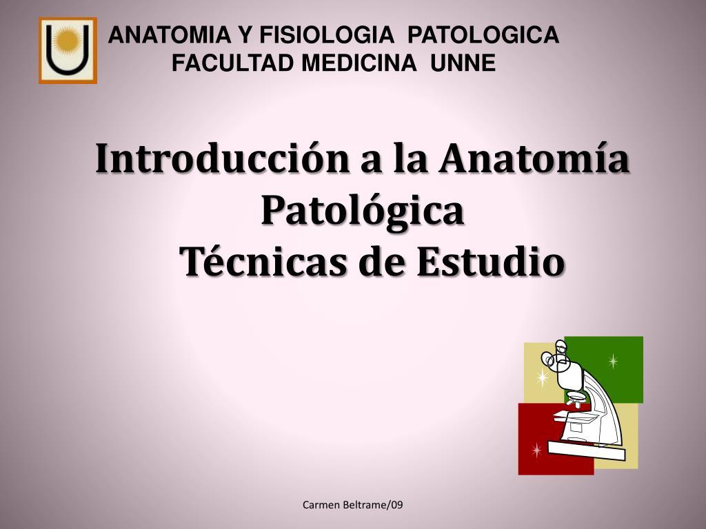 PPT - Introducción a la Anatomía Patológica Técnicas de Estudio ...