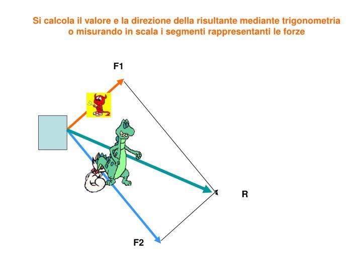 Si calcola il valore e la direzione della risultante mediante trigonometria