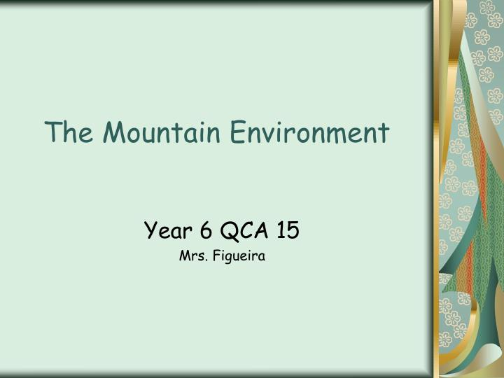 the mountain environment n.
