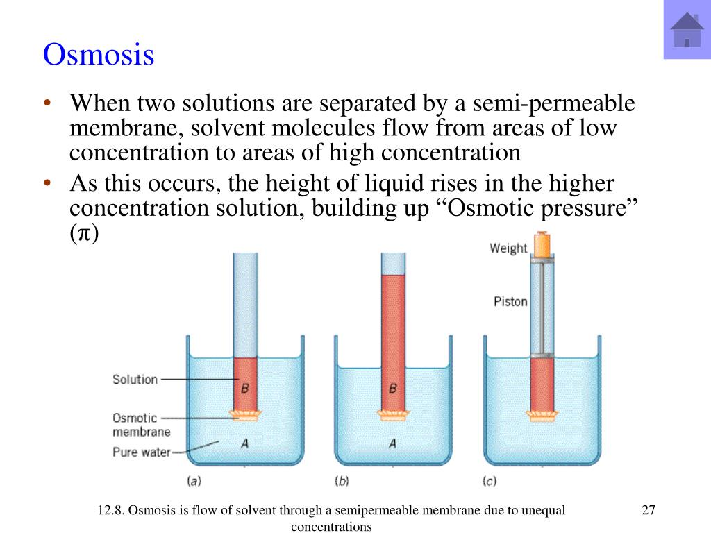 PPT - Ch 13  Properties of Solutions