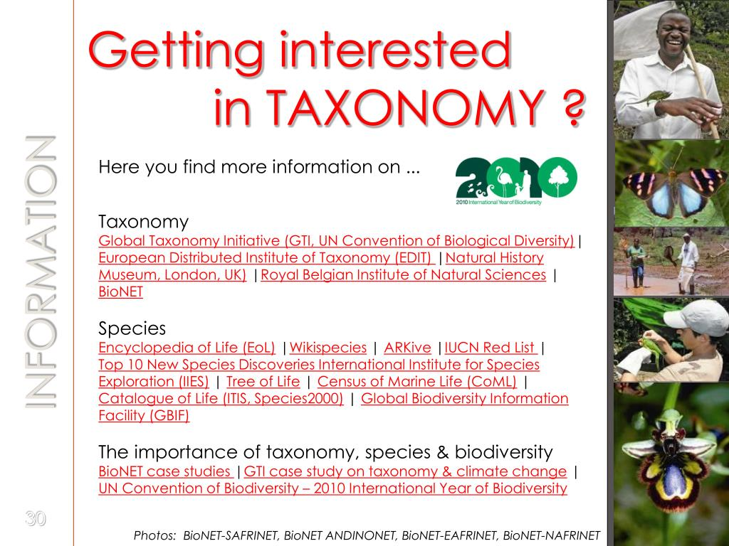 Getting interested     in TAXONOMY ?