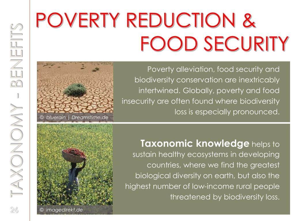 POVERTY REDUCTION &