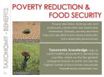 poverty reduction food security