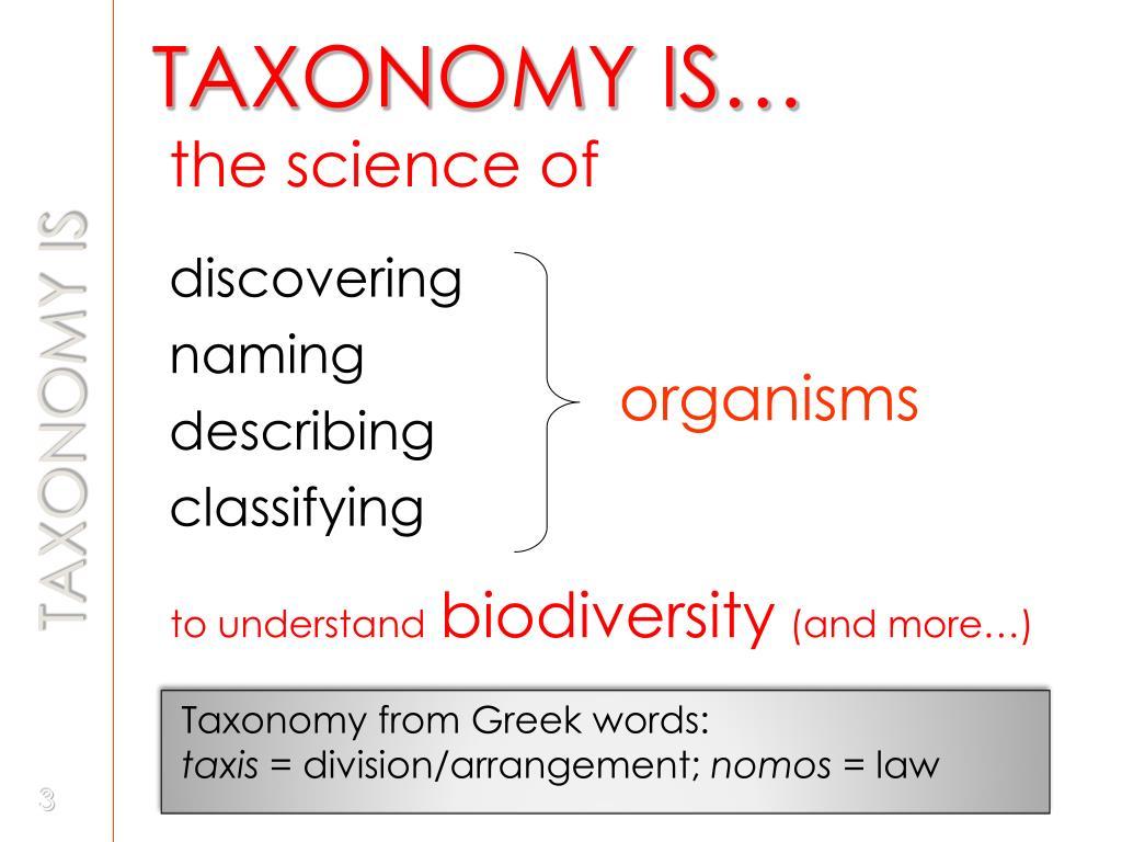 Taxonomy from Greek words: