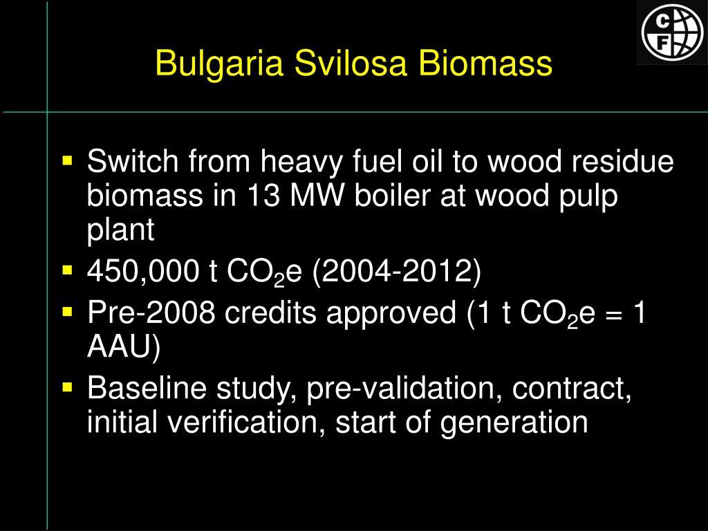 Bulgaria Svilosa Biomass