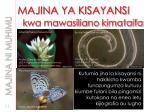 majina ya kisayansi kwa mawasiliano kimataifa