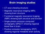 brain imaging studies