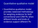 quantitative qualitative model