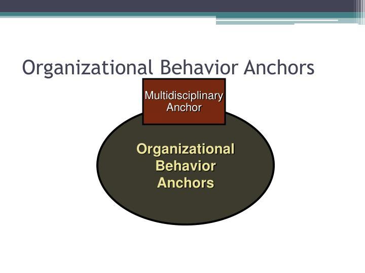 Organizational Behavior Anchors