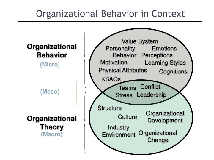 Organizational Behavior in Context