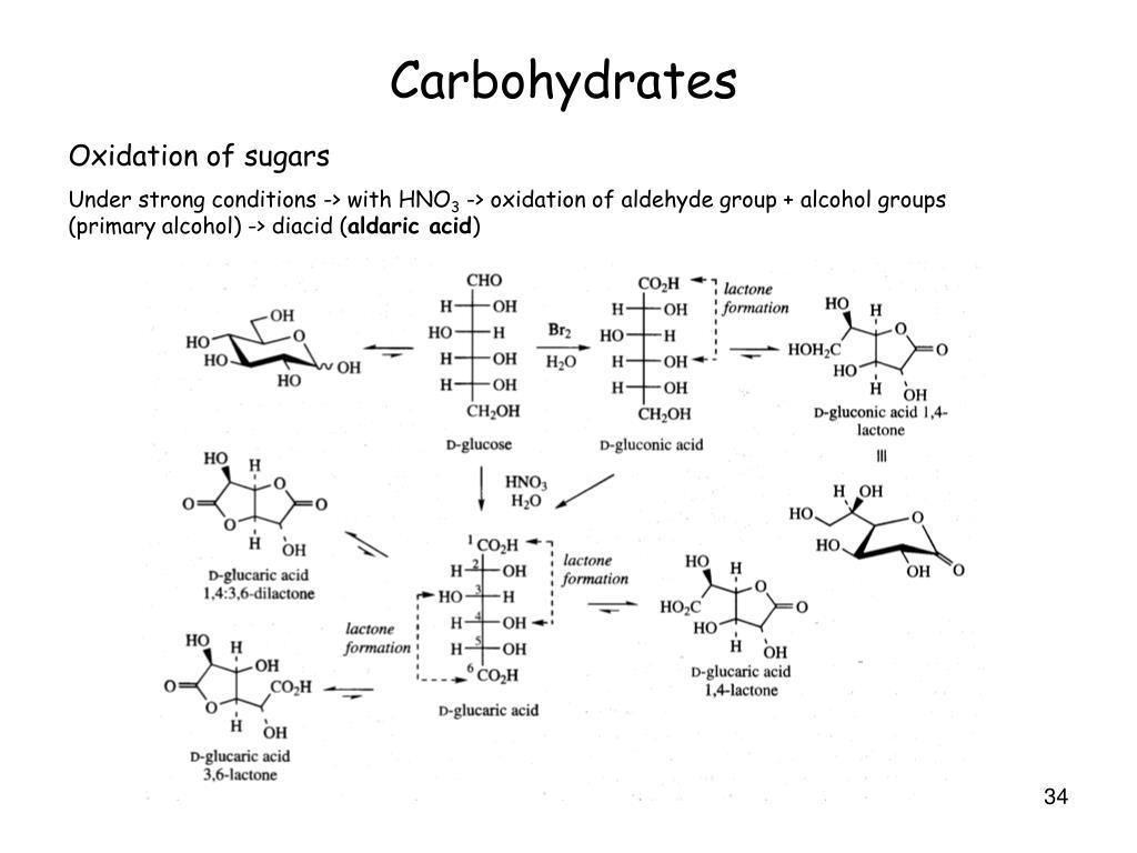 Oxidation of sugars