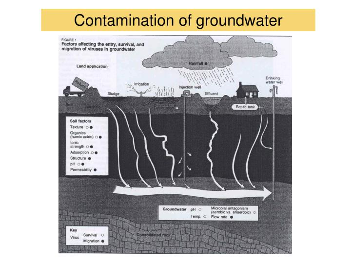 Contamination of groundwater