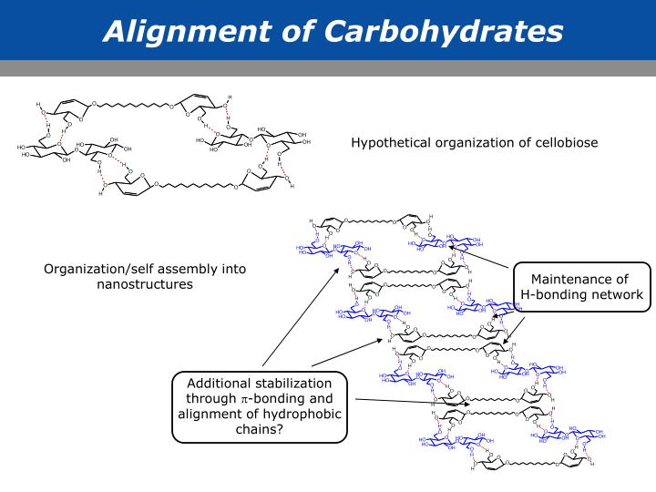 Alignment of Carbohydrates