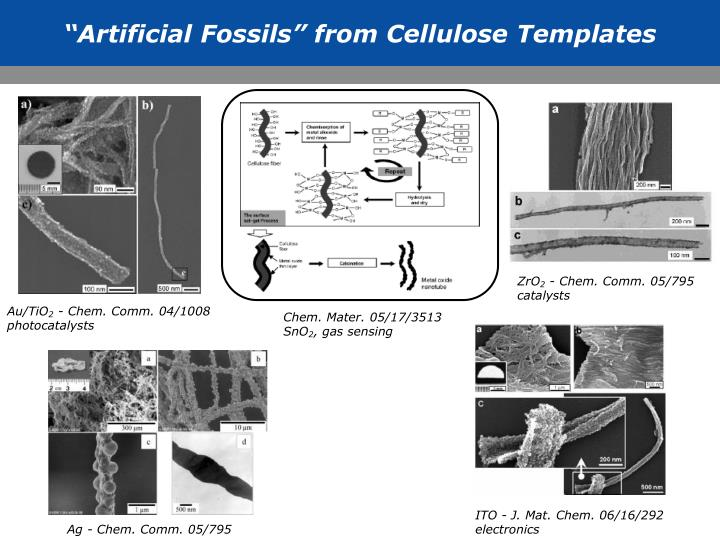 """""""Artificial Fossils"""" from Cellulose Templates"""