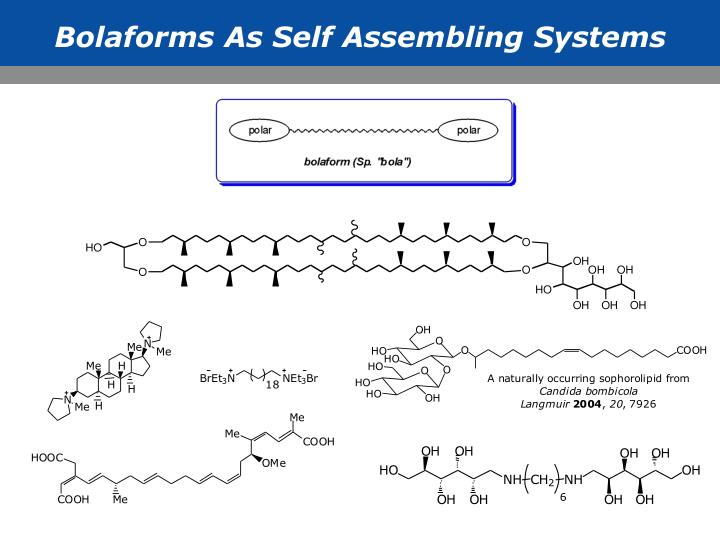 Bolaforms As Self Assembling Systems