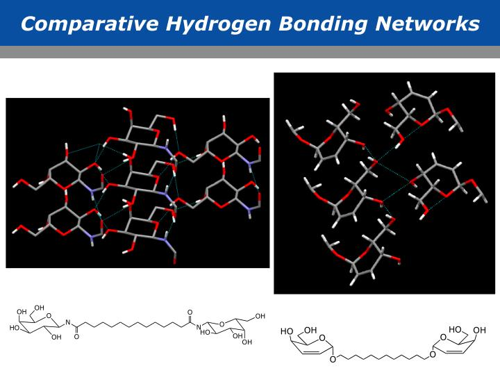 Comparative Hydrogen Bonding Networks