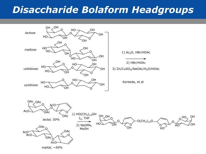 Disaccharide Bolaform Headgroups