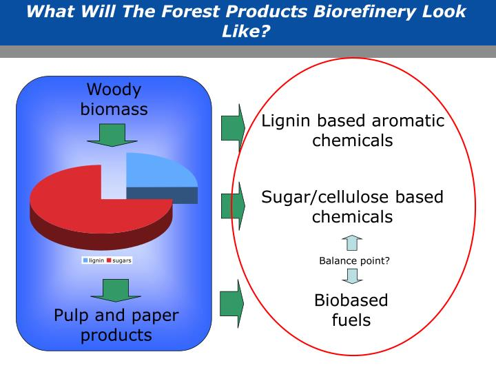 What Will The Forest Products Biorefinery Look Like?