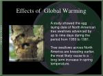 effects of global warming22