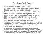 petroleum fuel future