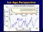 ice age perspective