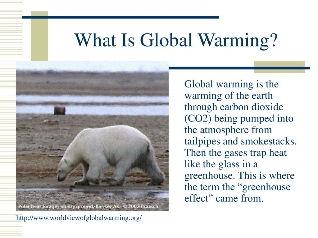 What Is Global Warming?