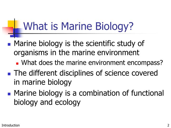 essay about marine biology Marine biology term paper on coral diseases biologists refer to coral reefs as the rain forests of the sea coral reefs are the habitat of 33 of the 38 identified animal phyla, whereas tropical rain forests give shelter to only eight phyla.