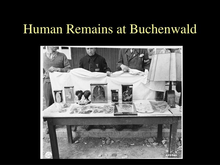Human Remains at Buchenwald