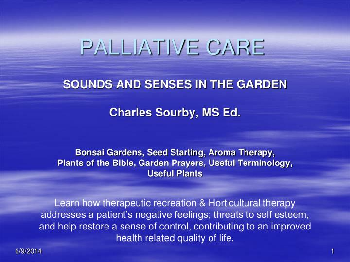 palliative care n.