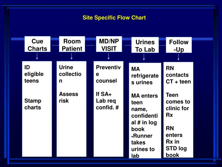 Site Specific Flow Chart