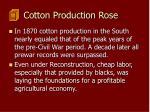 cotton production rose103