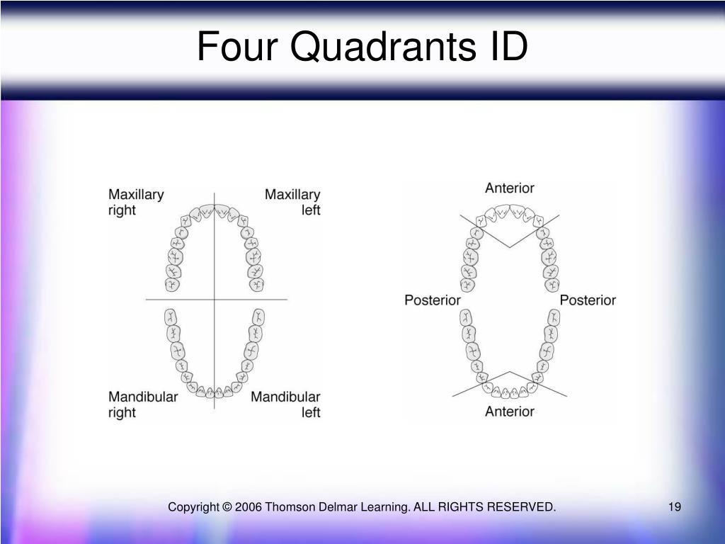 Four Quadrants ID