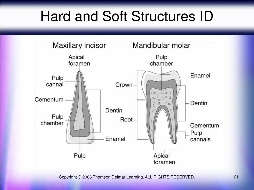 Hard and Soft Structures ID