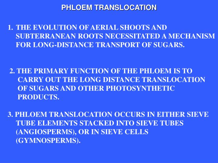 translocation plant physiology and phloem water Plant translocation: special tubes that run all throughout the plant, known as phloem sugar to build up in the phloem in the leaves, and water enters via.