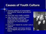 causes of youth culture