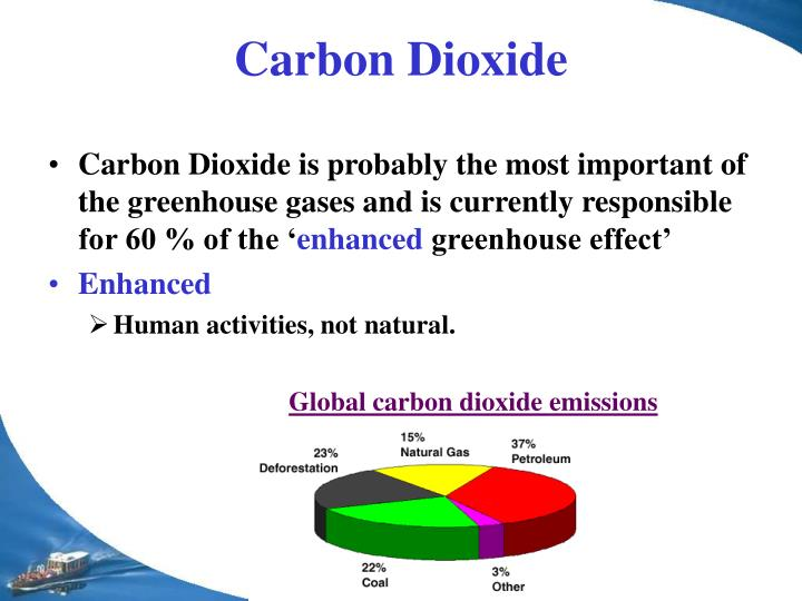 environment global warming and current carbon dioxide essay (thursday, may 30, 2013) - chlorofluorocarbons (cfcs) are to blame for global warming since the 1970s and not carbon dioxide, according to new conventional thinking says that the emission of human-made non-cfc gases such as carbon dioxide has mainly contributed to global warming.