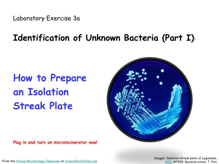 Laboratory exercise 3a
