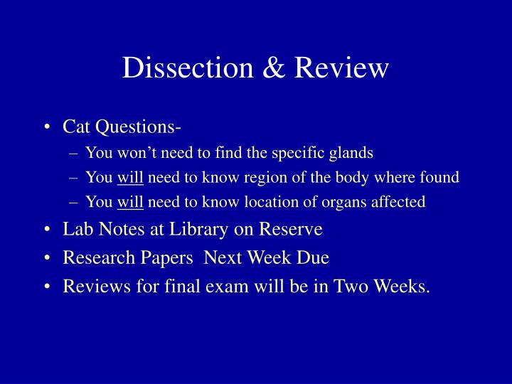 Dissection & Review