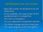self effectuating work comp concepts